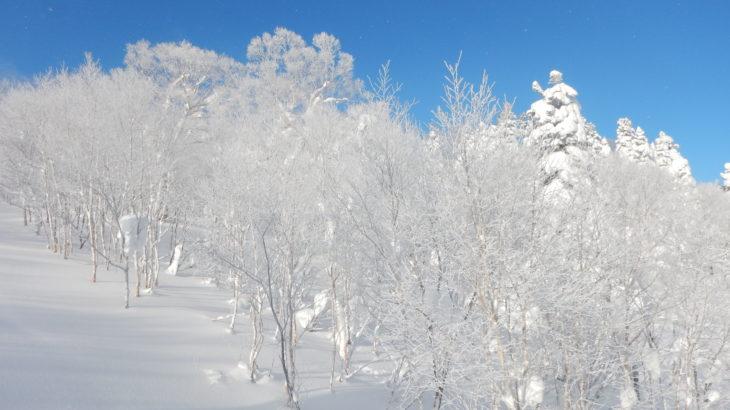 スキー技術向上のためにするべきこと。